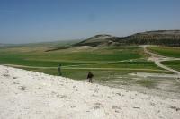 syria-spring1